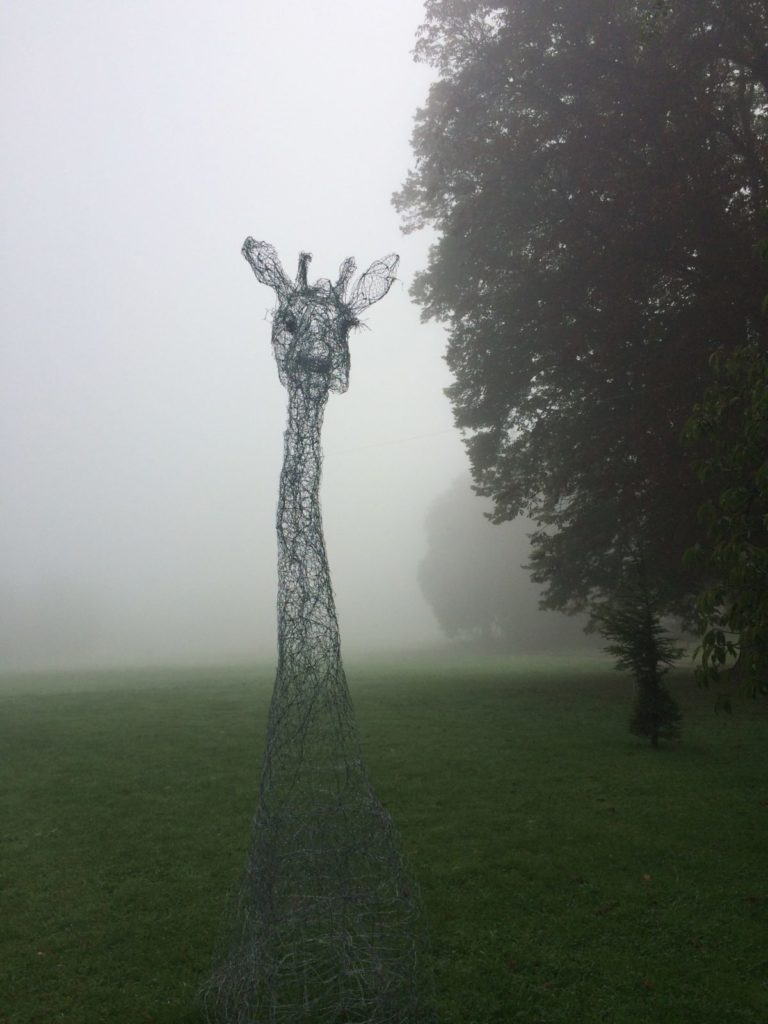 pauline ohrel figures in the mist IMG_9140